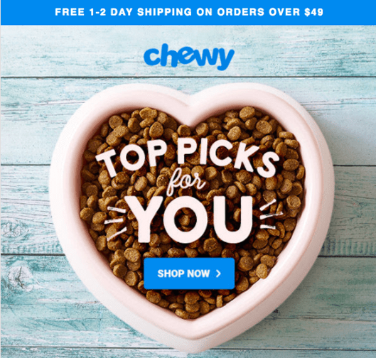 Example of an email from Chewy with a simple CTA button