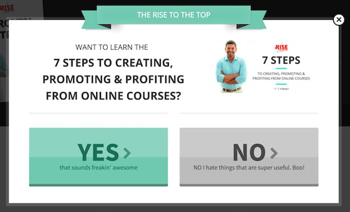 online course lead magnet